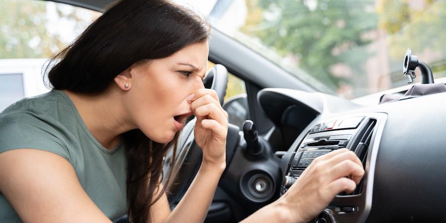mal olor aire acondicionado coche